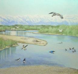 Fiume Sesia, Sesia river
