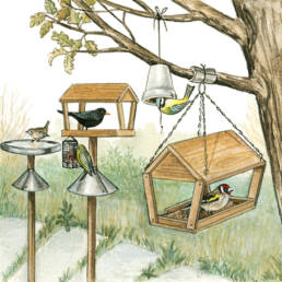 Mangiatoie, Bird feeders